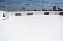 【EX-009α】沖縄県S様邸 屋根遮熱塗装